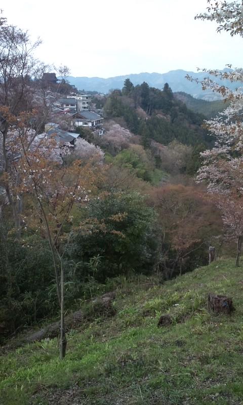 英彦山の風景